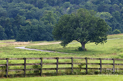 Indiana Landscapes Photograph - Country Lane - D008558 by Daniel Dempster
