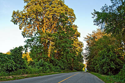 Road Photograph - Country Road by Steve Harrington