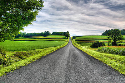 Finger Lakes Photograph - Country Road by Steven Ainsworth