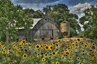 Sunflowers Digital Art - Country Sunflowers by Lori Deiter