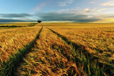 Windy Photograph - Countryside by Piotr Krol (bax)