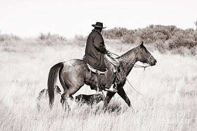 Artist Working Photograph - Cowboy And Dogs by Cindy Singleton