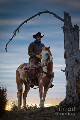 Wyoming Photograph - Cowboy Under Tree by Inge Johnsson