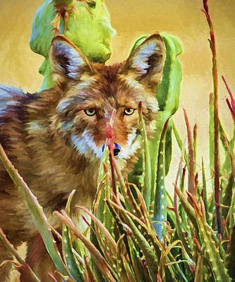 Earthtone Painting - Coyote In The Aloe by David Wagner