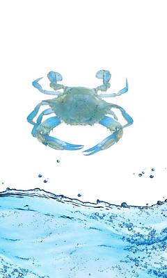 Sea Horse Digital Art - Crab Strolling Around by Art Spectrum