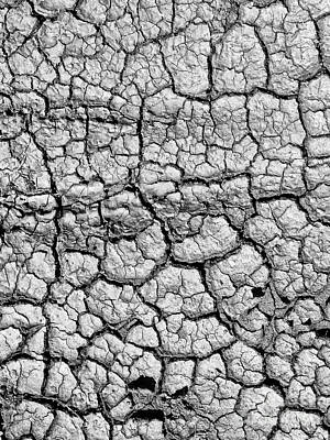 Black And White Photograph - Cracked Earth by Paul Topp