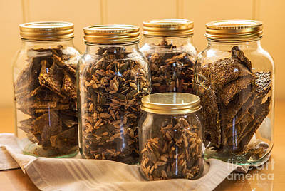 Cracker And Nut Healthy Snacks Print by Iris Richardson