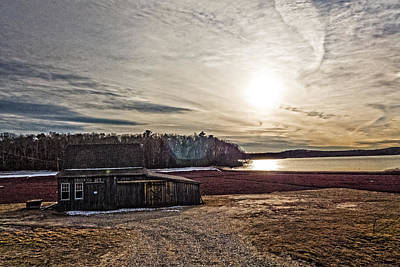 Cranberry Bog Winter Of 2012 Print by Frank Winters