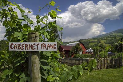 Crane Creek Vineyard Print by Debra and Dave Vanderlaan