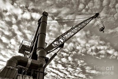 Crane Print by Olivier Le Queinec