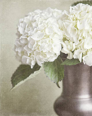 Cream Hydrangea In A Bronze Vase Still Life Print by Lisa Russo