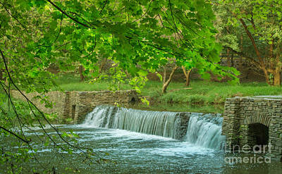 A Summer Evening Landscape Photograph - creek at Valley Forge by Rima Biswas