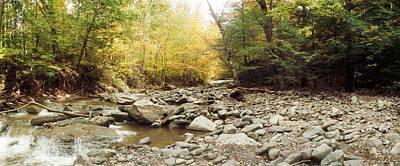 Catskill Photograph - Creek Running Through The Catskills by Panoramic Images
