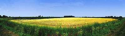 Quebec Photograph - Crop In A Field by Panoramic Images
