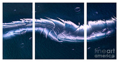 Crystalline Entity Triptych  Print by Peter Piatt