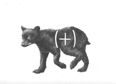 Gay Bear Drawing - Cub by Alexander M Petersen