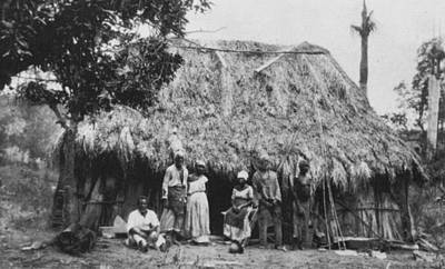 Cuba Plantation Workers Print by Granger