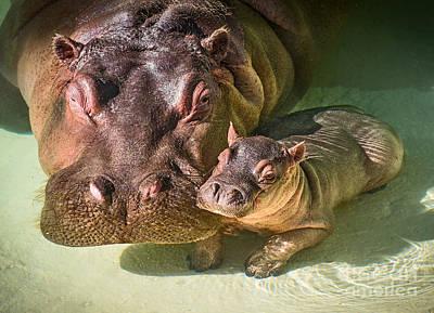 Cuddle With Mom Print by Jamie Pham