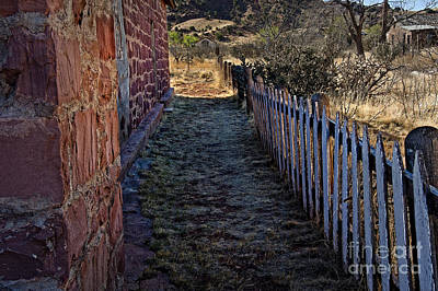 Framed Old Town Door Photograph - Cuervo And The Garden Path by Lee Craig