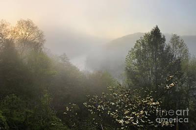 Cumberland River Dawn - D008596 Print by Daniel Dempster