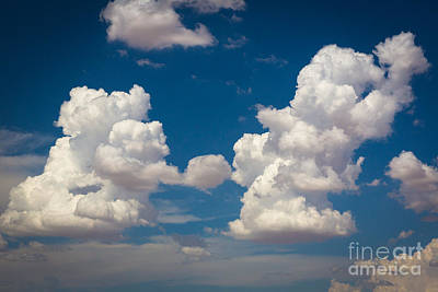 Cumulus Photograph - Cumulus by Inge Johnsson