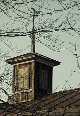 Cupola Through The Trees Print by Debbie Finley