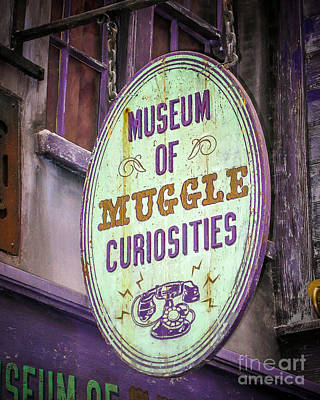 Curiosities Print by Perry Webster
