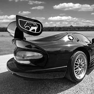 Viper Photograph - Curvalicious Viper Black And White - Square by Gill Billington