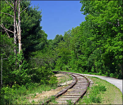 Maine Landscape Photograph - Curved Tracks by Catherine Melvin