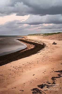 Menacing Photograph - Curves On Beach by Elena Elisseeva