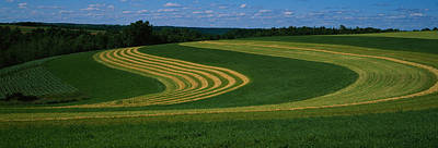 Farm In Woods Photograph - Curving Crops In A Field, Illinois, Usa by Panoramic Images