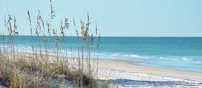 Serene Beach Sea Oats Panoramic Print by Rebecca Brittain