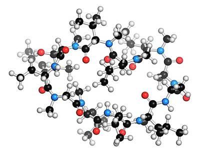 Atom Photograph - Cyclosporine Immunosuppressant Drug by Molekuul