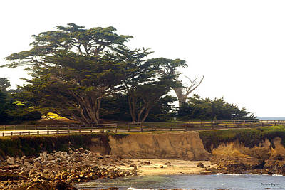 Bridge On Highway One Digital Art - Cypress Trees On 17 Mile Drive by Barbara Snyder