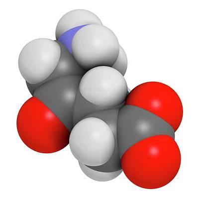 D-aminolevulinic Acid Ala Drug Molecule Print by Molekuul