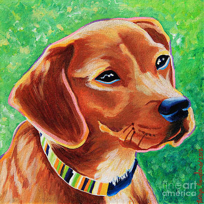 Beagle Puppies Painting - Dachshund Beagle Mixed Breed Dog Portrait by Robyn Saunders