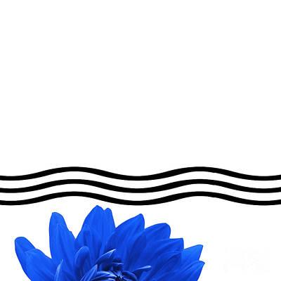 Dahlia Flower And Wavy Lines Triptych Canvas 1 - Blue Print by Natalie Kinnear
