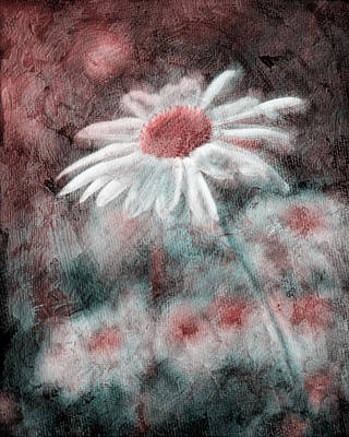 Digital Altered Photograph - Daisies ... Again - P11ac2t1 by Variance Collections