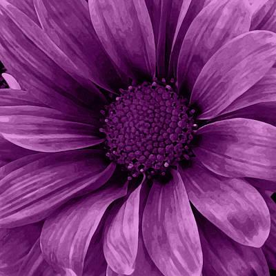 Purple Grapes Mixed Media - Daisy Daisy Grape by Angelina Vick