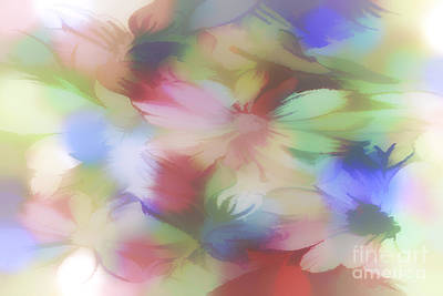 Manipulation Photograph - Daisy Floral Abstract by Tom York Images