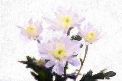 Daisy Flowers In Oil  Original by Toppart Sweden