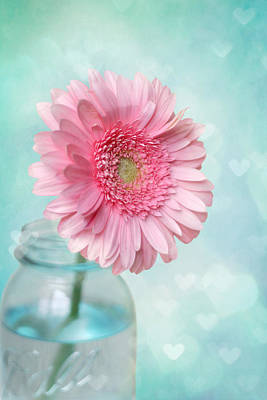 Mason Jars Photograph - Daisy Love by Amy Tyler