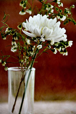 Daisy Mum On Red 3 Print by Angelina Vick
