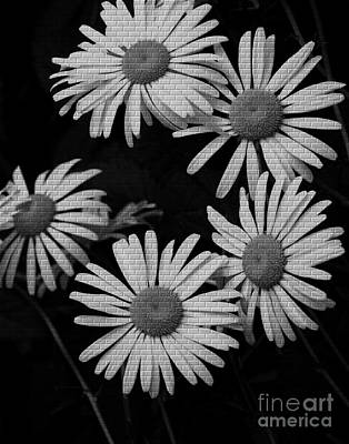 Aster Mixed Media - Daisy Mural by Chalet Roome-Rigdon