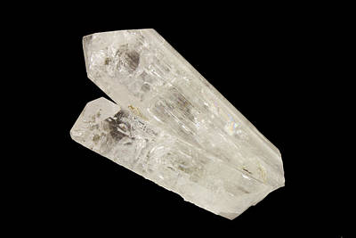 Danburite Crystals Print by Science Stock Photography