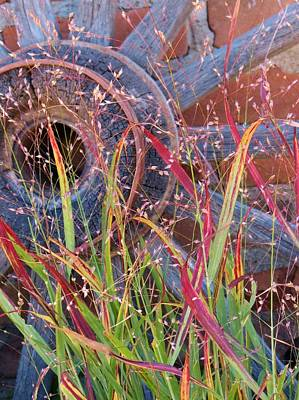 Wagon Wheel Red And Green Country Colored Grass Photograph - Dance Of The Wild Grass by Feva  Fotos