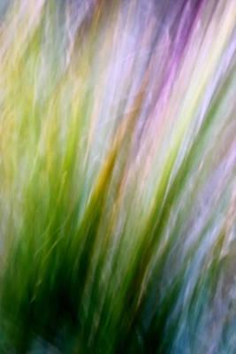 Dancing Grass Print by Mah FineArt