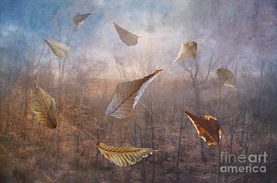 Dancing Leaves Print by Larry Braun