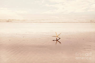 Dancing Starfish Beach Photograph Print by Sylvia Cook