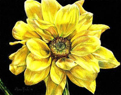 Dancing Yellow Daisy Print by Shana Rowe Jackson